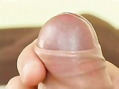 polish gay videos tube